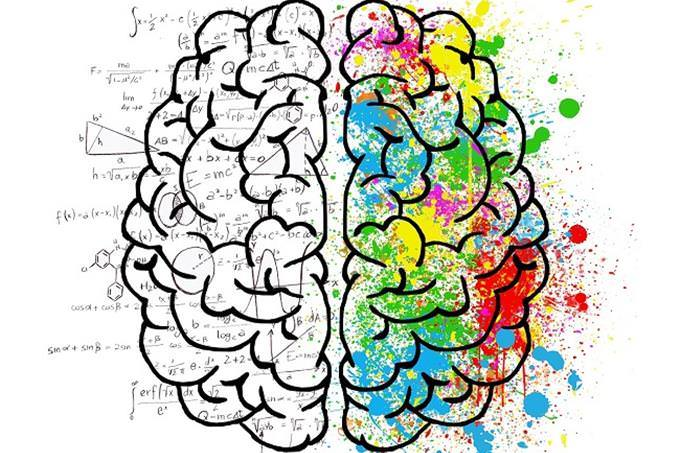 Illustration of both sides of the brain, creative and analytic