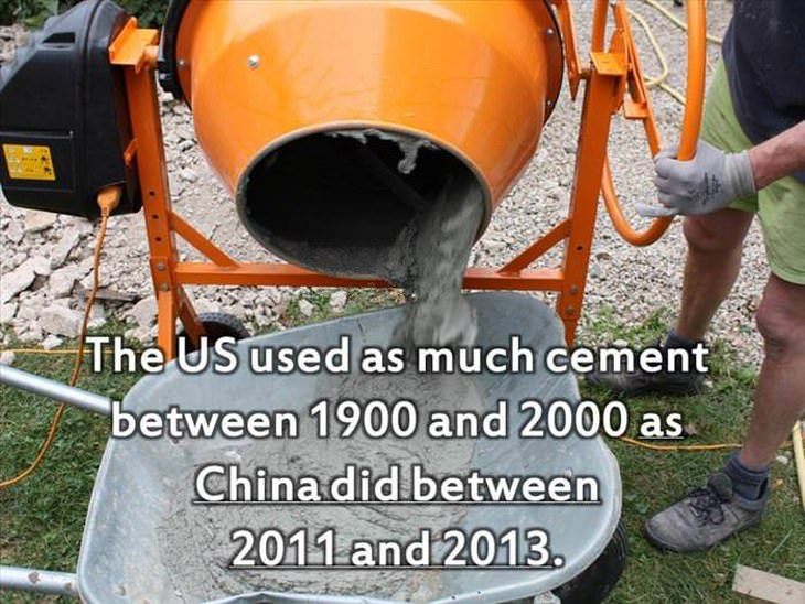 US odd facts