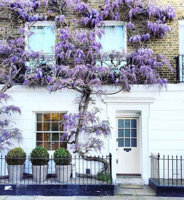Doors of London