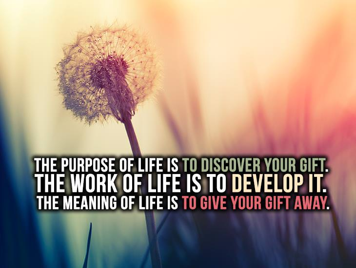 The Purpose, Work and Meaning of Life