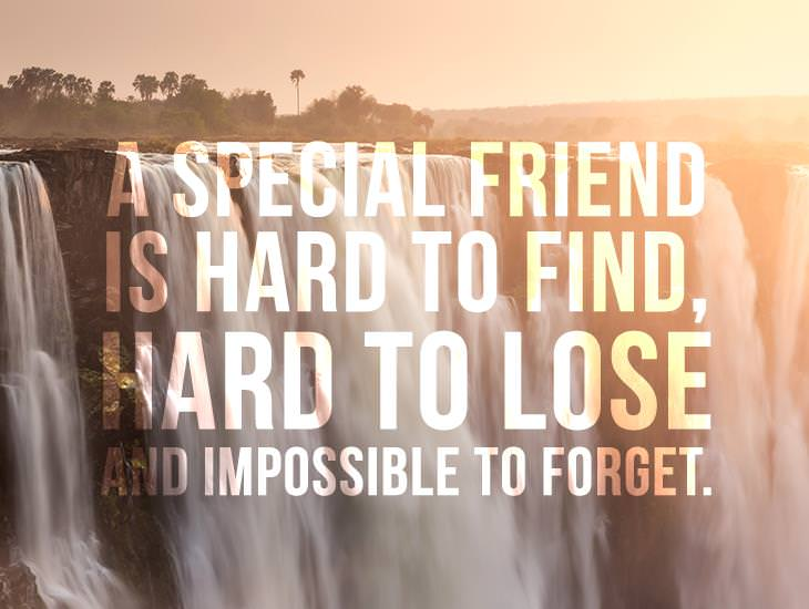 A Special Friend Is Hard To Find
