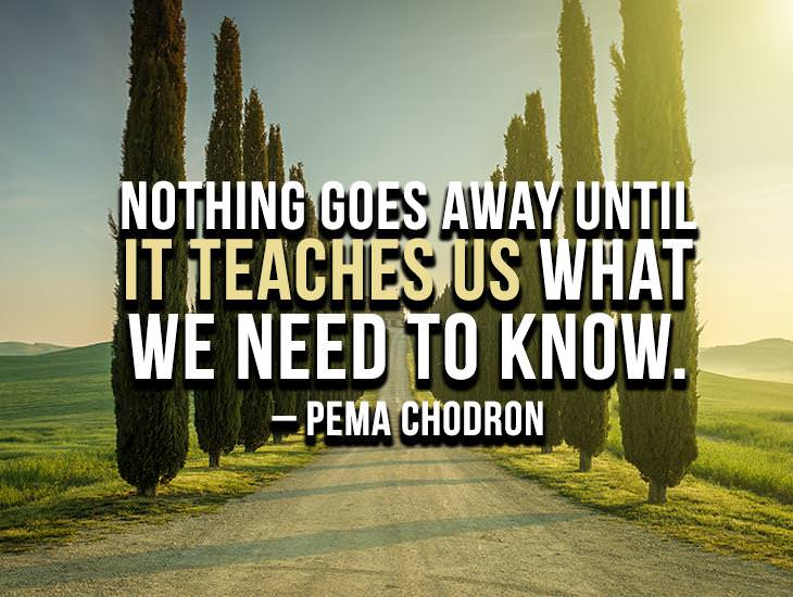 Nothing Goes Away Until It Teaches Us