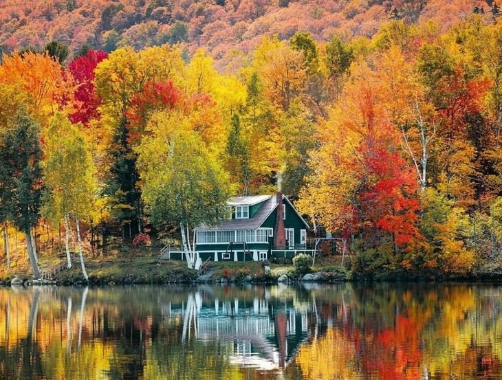 Fall Photos From Across the Globe Vermont, US