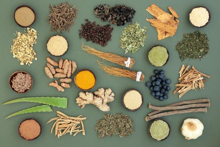 Adaptogens various herbs