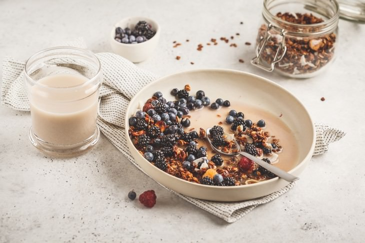 Plant Milks Suitable for Every Task granola with soy milk
