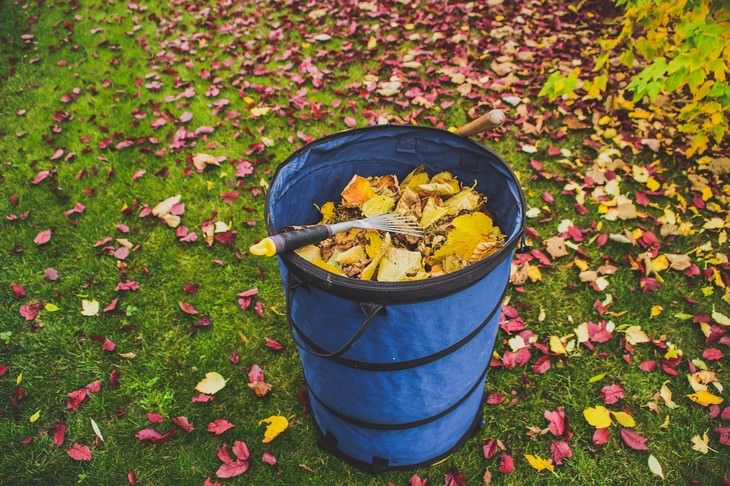 winter lawn care tips a bucket full of leaves in the yard