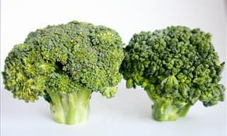 Healthy Vegetables: Broccoli