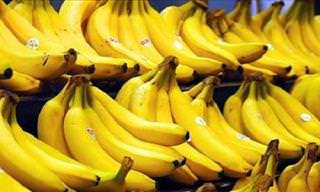 Everything about the banana: bananas in a shop
