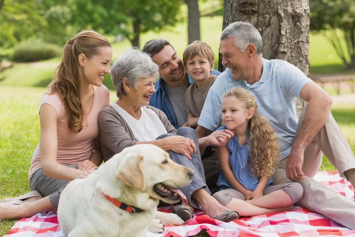 15 questions to ask doctor during exam happy family picture in the park