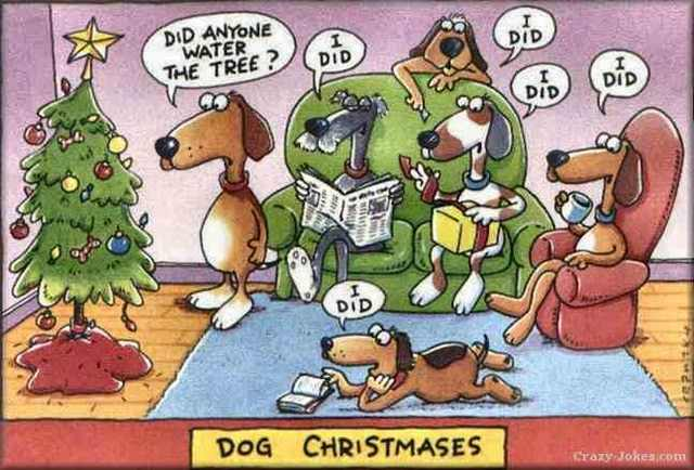 Christmas funny cartoon