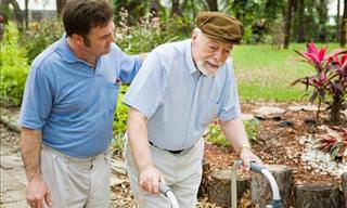 Alzheimer's Guides