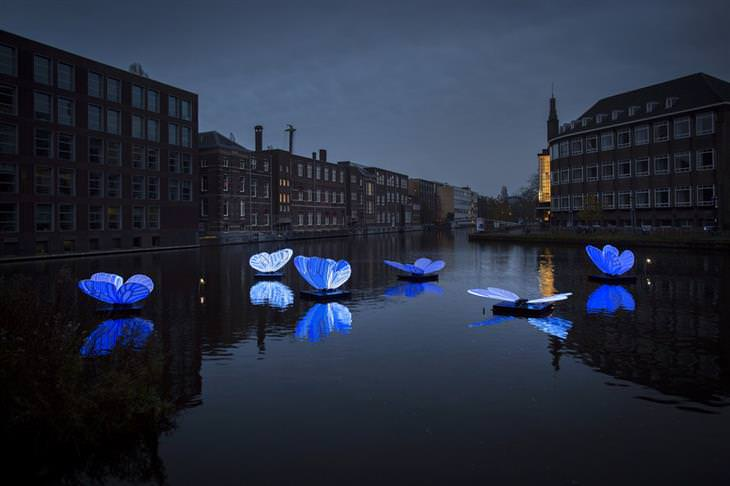 Amsterdam festival of lights 2019