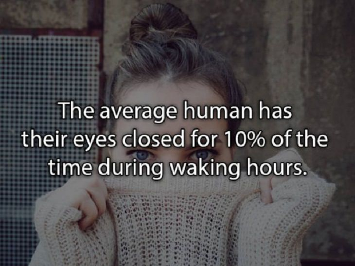 fascinating random facts eyes