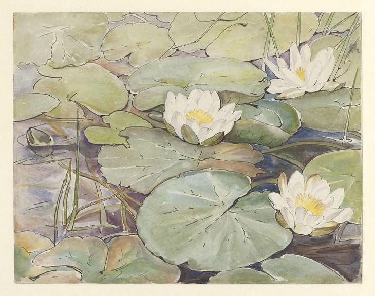 Beatrix Potter Three white water lilies(1906)