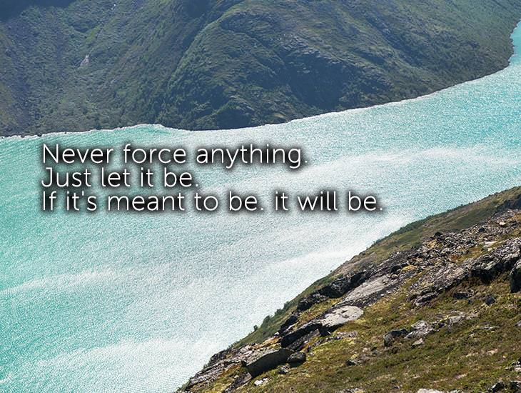 Never Force Anything. Just Let It Be.