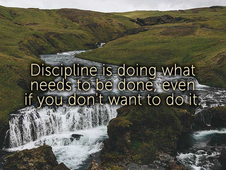 Discipline is Doing What Needs To Be Done