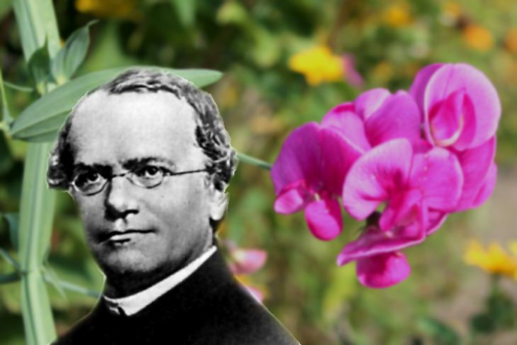 underappreciated scientists Gregor Mendel