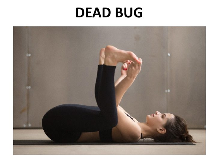 Exercises to Help Reduce Chronic Pain dead bug
