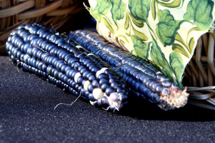 Anthocyanins: blue corn