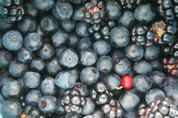 Anthocyanins: berries