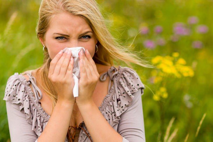 Spring allergies: sneeze