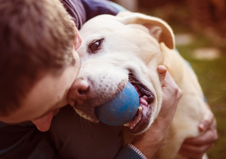 unhealthy habits Not Introducing Good Hygiene Habits When Playing With Your Pet