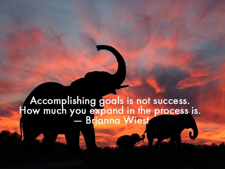 Accomplishing Goals Is Not Success