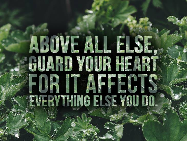 Above All Else, Guard Your Heart