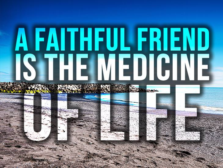 The Medicine Of Life