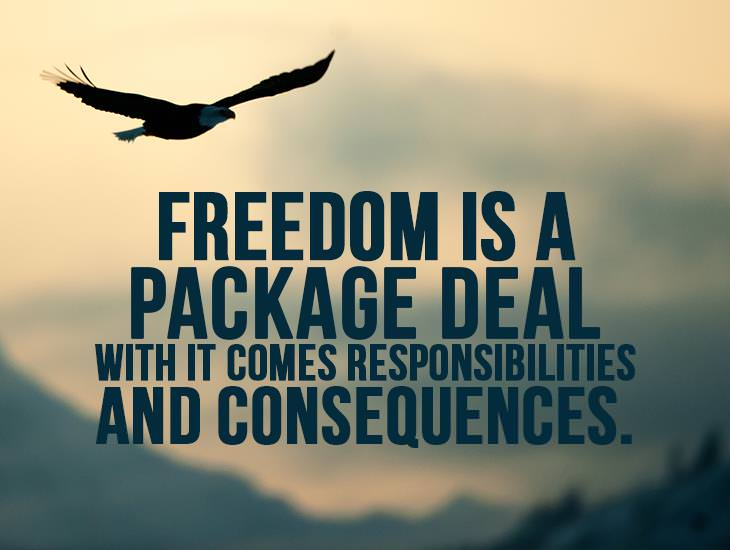 Freedom Is A Package Deal