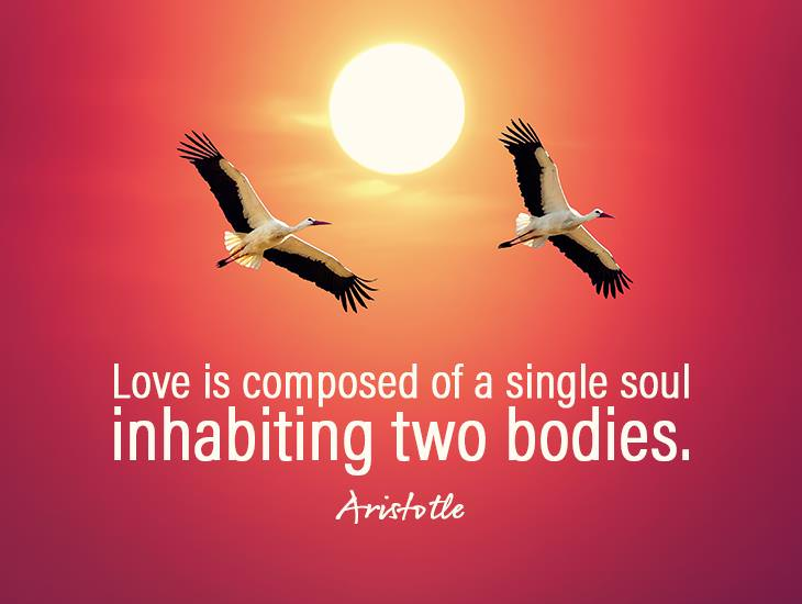 Love: A Single Soul Inhabiting Two Bodies