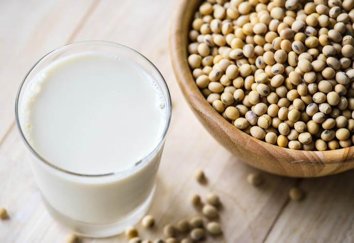 soy guide soy milk and soybeans