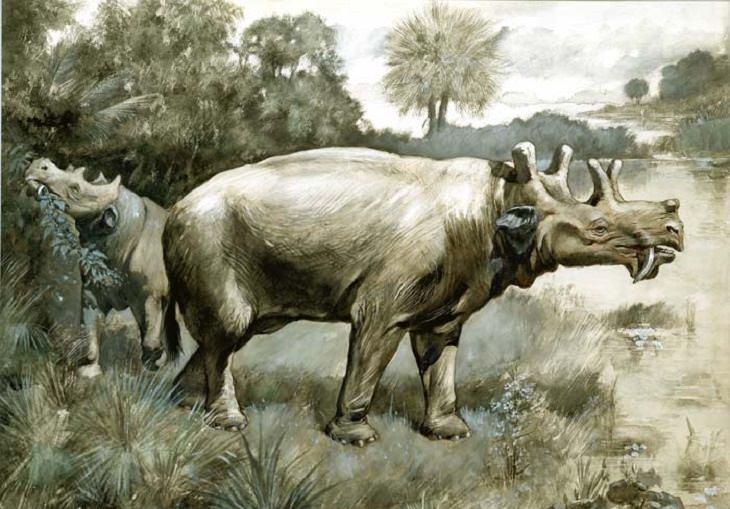 Strange prehistorical animals: eobasileus