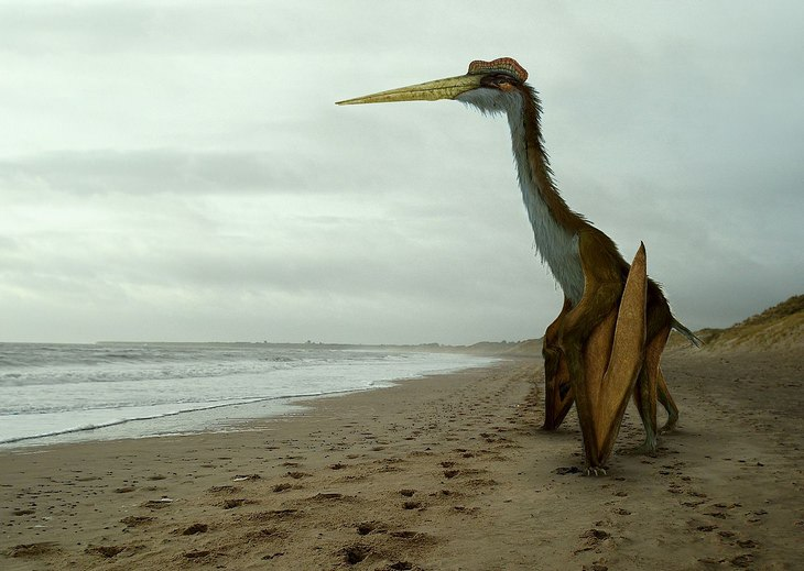 Strange prehistorical animals: quetzlcoatlus