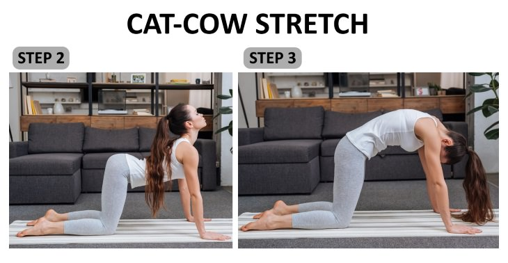 Lower Back Spasm Exercises cat-cow stretch