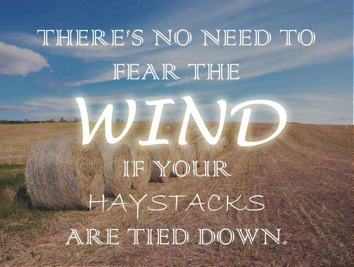 There's No Need To Fear The Wind