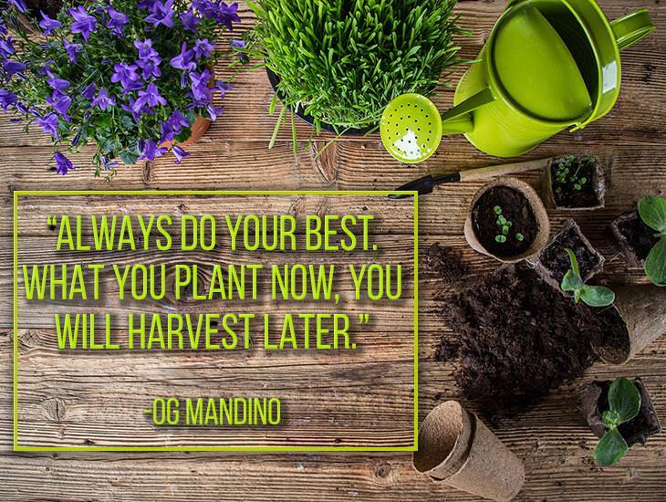 Always Do Your Best!