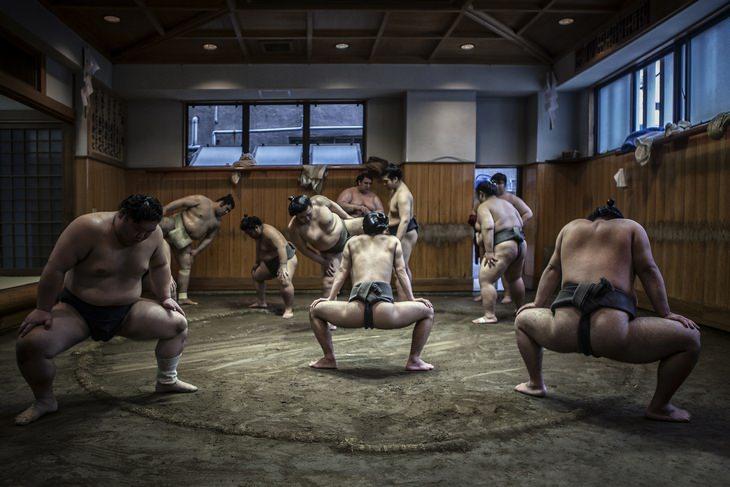 Japan travel tips: sumo