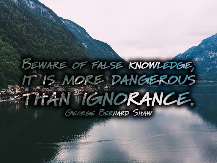 Beware Of False Knowledge