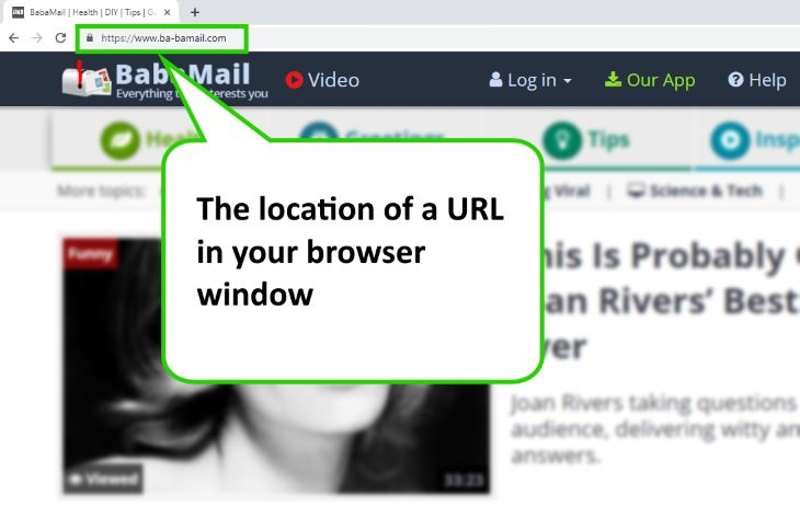 internet terms URL