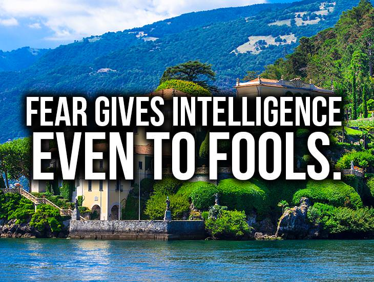 Fear Gives Intelligence