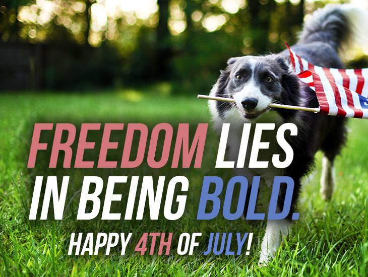 Where Freedom Lies