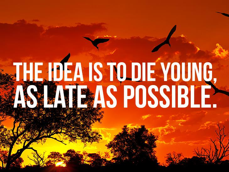 The Idea Is To Die Young