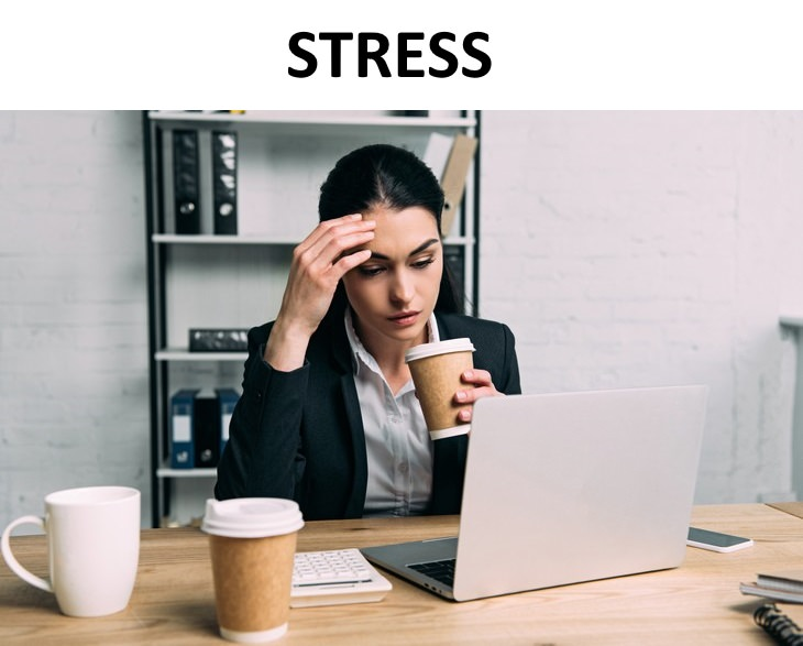 irritability guide Stress