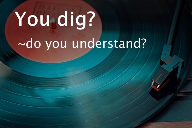 1950's slang  You Dig?