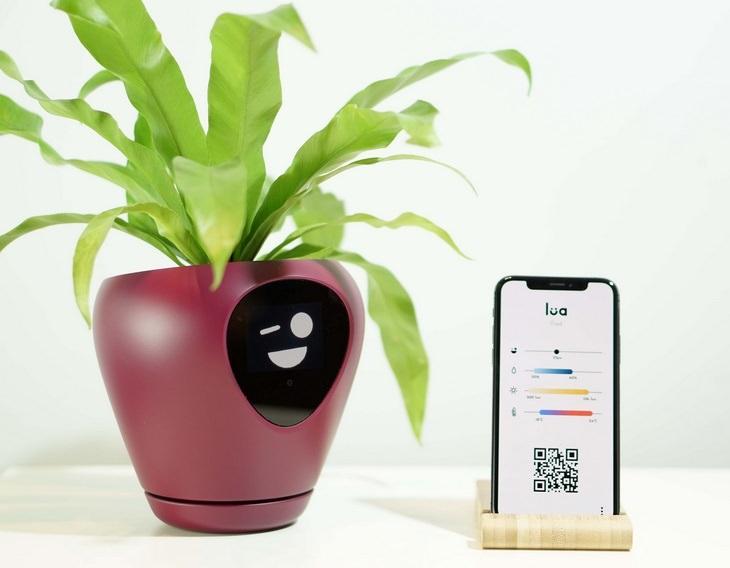 Smart planter: app