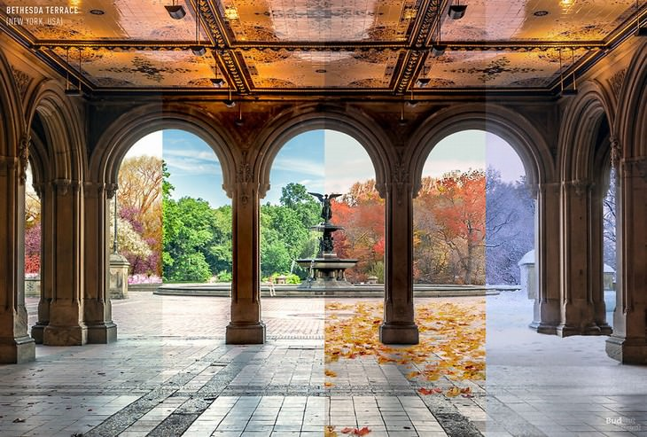 throughout the seasons places in the world Bethesda Terrace