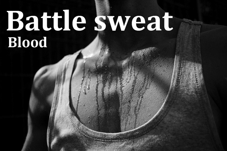Kennings: battle sweat