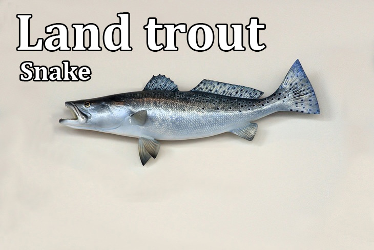 Kennings: land trout