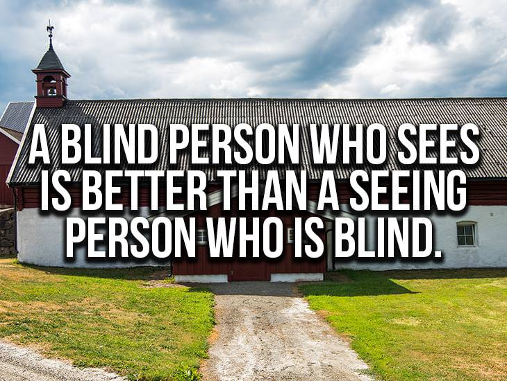 A Blind Person Who Sees